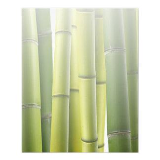 Green Bamboo Grove Spa Skin Care Massage Salon Flyer