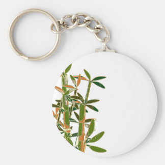Green bamboo  isolated on white background keychain