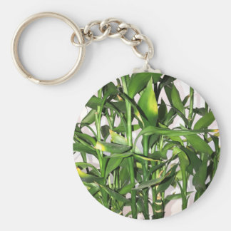 Green bamboo shoots and leaves keychain