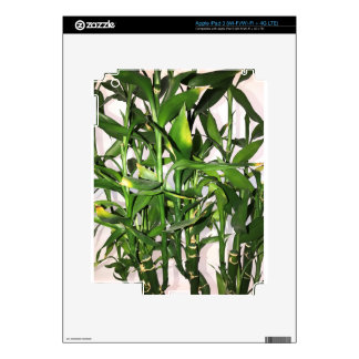 Green bamboo shoots and leaves skins for iPad 3