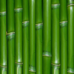 bamboo wrapping paper zazzle