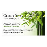 Green Bamboos Spa Skin Care Massage Salon Double-Sided Standard Business Cards (Pack Of 100)