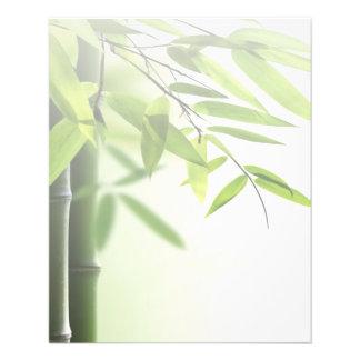 Green Bamboos/Spa Skin Care Massage Salon Flyer