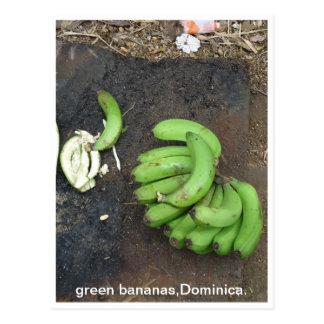 green bananas,Dominica. Postcard