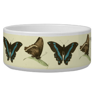 Green-banded Swallowtail Butterfly, Pet Food Bowls
