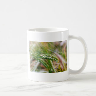 Green Barley Coffee Mug