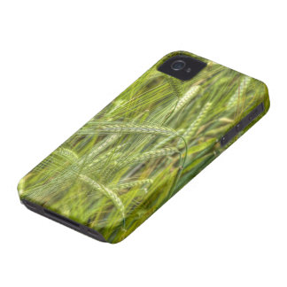 Green Barley Field Apple iPhone 4 protective case