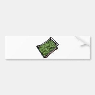 Green beans in box on white background bumper sticker