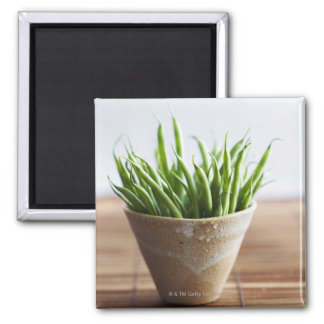 Green beans in pot on bamboo surface magnet
