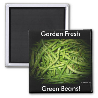 Green Beans in Spotlight Fridge Magnet
