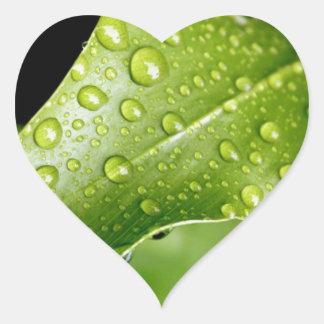green beauty heart sticker