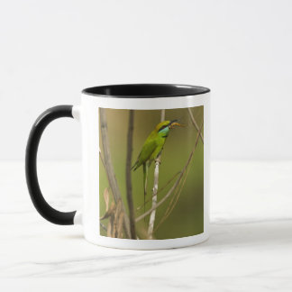 Green Bee-eater eating insect Mug