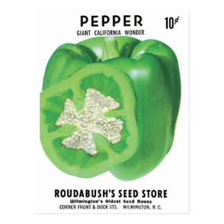 Green Bell Pepper Seed Packet Postcard