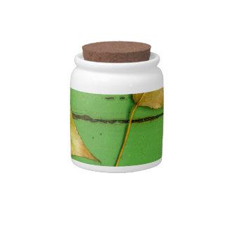 Green Bench Leaves.jpg Candy Jars