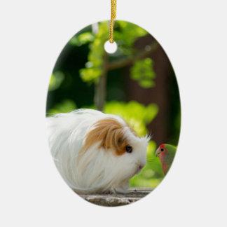 green bird and guinea pig in has spring garden ceramic ornament