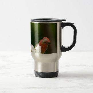 green bird fun mugs
