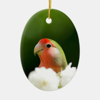 green bird fun Double-Sided oval ceramic christmas ornament