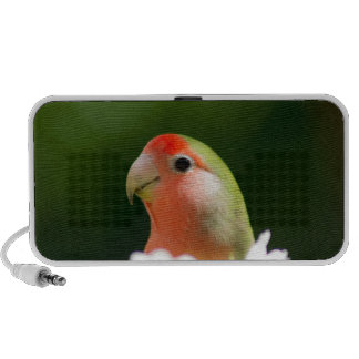 green bird fun portable speaker