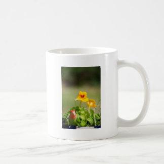 Green bird in has spring garden mugs