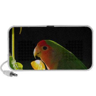 green bird mp3 speakers