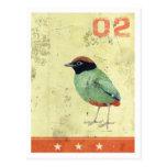 'Green Bird' postcard