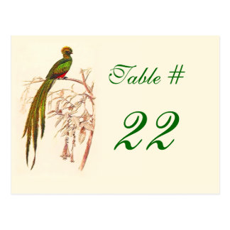 Green Bird Table Number Card