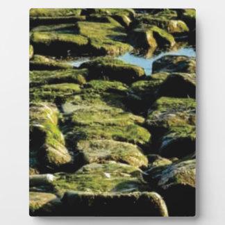 green block texture plaque