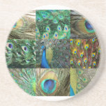 Green Blue Peacock photo collage Beverage Coasters