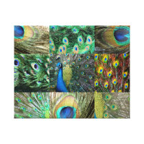 Green Blue Peacock photo collage Canvas Print
