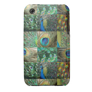 Green Blue Peacock photo collage Case-Mate iPhone 3 Cases