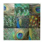 Green Blue Peacock photo collage Ceramic Tiles