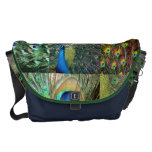 Green Blue Peacock photo collage Courier Bag
