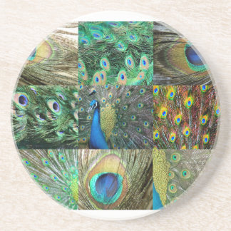Green Blue Peacock photo collage Drink Coaster