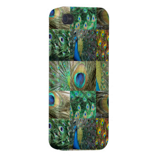 Green Blue Peacock photo collage iPhone 4/4S Case