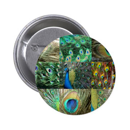 Green Blue Peacock photo collage Pinback Buttons