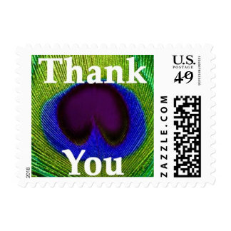 Green Blue Purple Peacock Feather Thank You Stamps