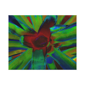 Green Blue Red Bromeliad Plant Image Canvas Print