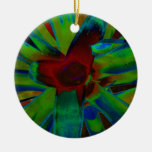 Green Blue Red Bromeliad Plant Image Christmas Ornaments
