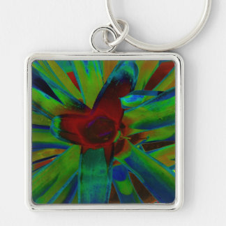Green Blue Red Bromeliad Plant Image Silver-Colored Square Keychain