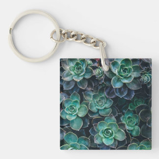 Green Blue Succulent Plants Keychain