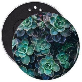 Green Blue Succulent Plants Pinback Button