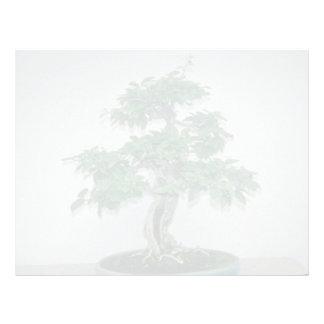 Green Bougainvillea glabro (paper flower, 60 years Customized Letterhead