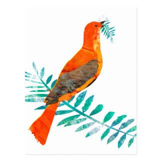 Green Branch Pretty Peace Red Bird Postcard