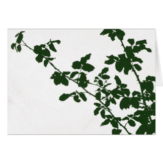 Green Branches Card