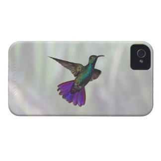 Green-breasted Mango Hummingbird Anthracocorax iPhone 4 Case-Mate Case
