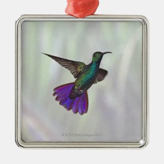 Green-breasted Mango Hummingbird Anthracocorax Metal Ornament