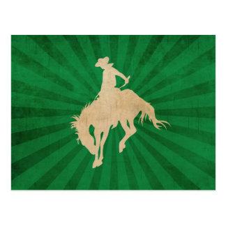 Green Brown Vintage Cowboy Postcard