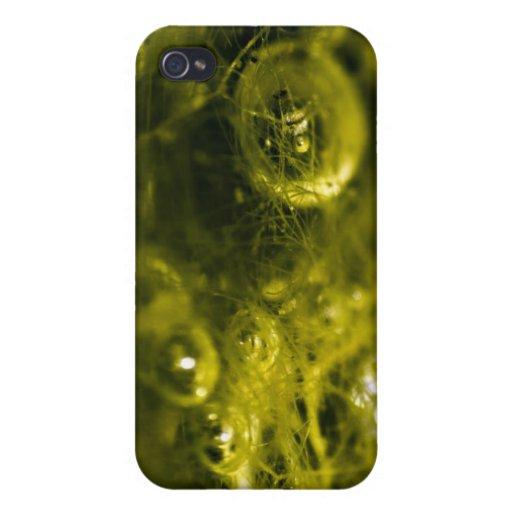 Green Bubble Case iPhone 4/4S Case