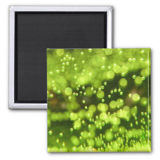 Green Bubbles 2 Inch Square Magnet