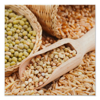 Green Buckwheat, Wheat, Oat And Mung - Cereal Poster